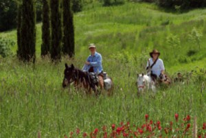 ippovie toscane1 300x201 Horse riding holidays in Tuscany