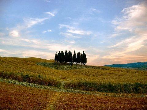 toscana-landscape-tuscany